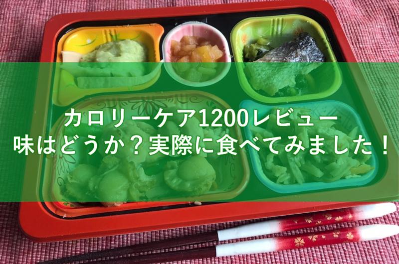 食宅便カロリーケア1200レビュー